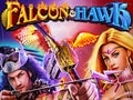 Falcon & Hawk